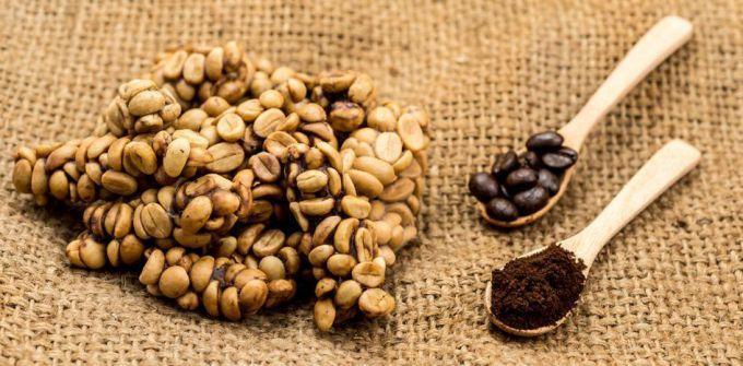 Какой он, элитный сорт кофе?