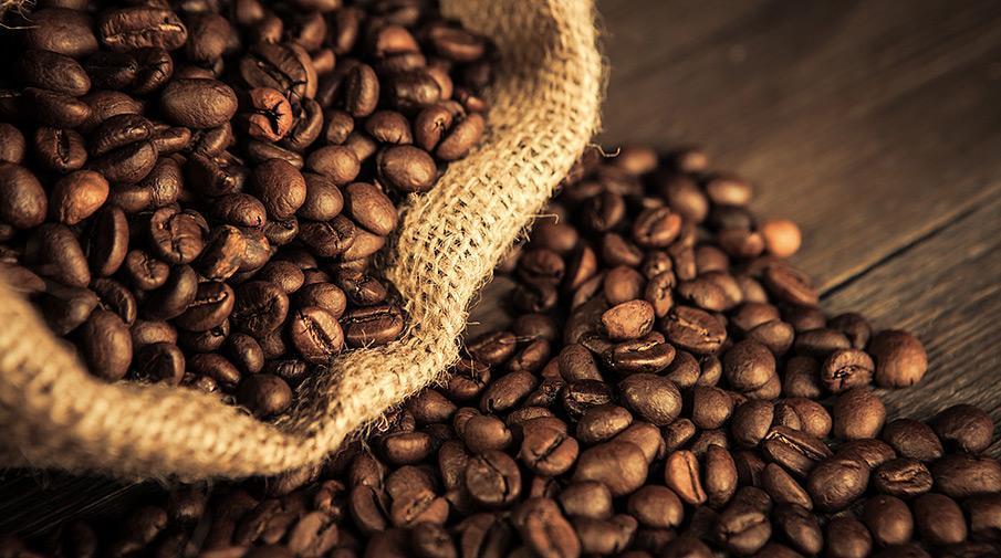 Что дает робуста в кофе