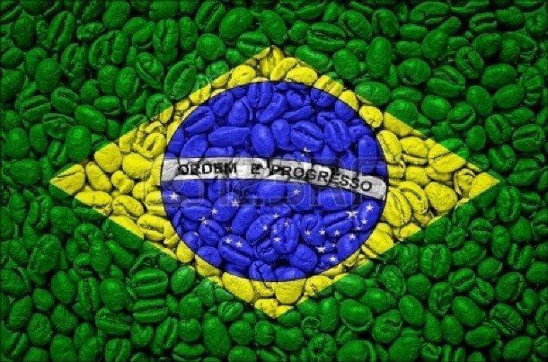арабика бразилия