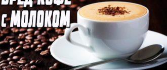 кофе с молоком вред и польза