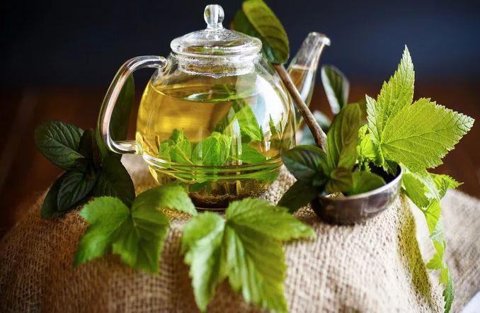 Полезные свойства малинового чая